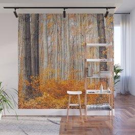 orange autumn Wall Mural