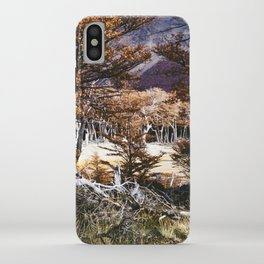 Fall in Patagonia, Argentina iPhone Case