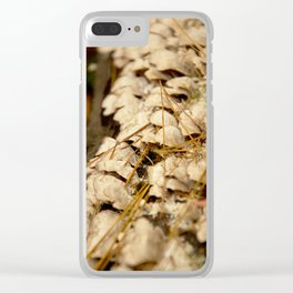 2015-10-23 - 0009 Clear iPhone Case