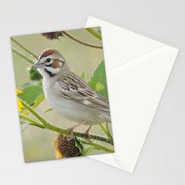 Lark Sparrow Stationery Cards