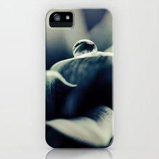 Daisy Blue iPhone (5, 5s) Slim Case