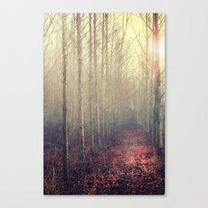 Path Through the Poplar Forest Canvas Print