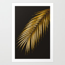 Dark and rich tropic minimalist creative photography of a golden palm leaf over a black canvas.  Art Print