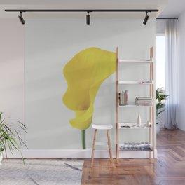 Yellow Calla Lily Wall Mural