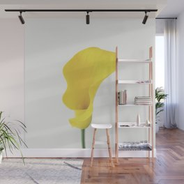 Yellow Calla Lily Wall Mural