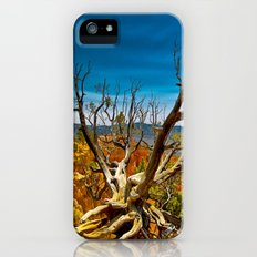Bryce Canyon National Park, Utah, USA iPhone SE Slim Case