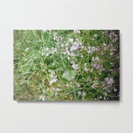Flowers in California Metal Print