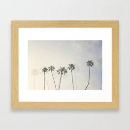 Double Exposure Palms 1 Framed Art Print