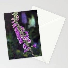 Longwood Gardens - Spring Series 131 Stationery Cards