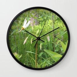Shooting Star Beauty Wall Clock