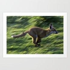 Fox cub on the Run Art Print