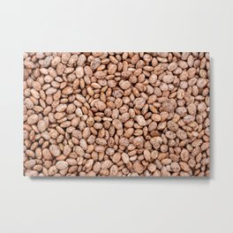Pinto beans Metal Print