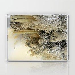 Ice Sculptures Laptop & iPad Skin
