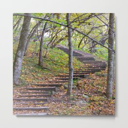 Stairway into the Woods Metal Print