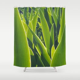 Luminous Shower Curtain