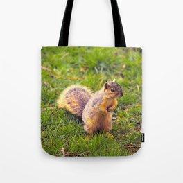 Levi The Squirrel Tote Bag