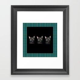 Three black Cats on Plaid Background Framed Art Print