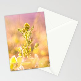 The Watchtower Stationery Cards
