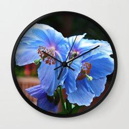 Blue Babies Wall Clock