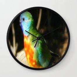 Australian Native Birds Wall Clock