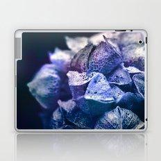 Dream Flower 5 Laptop & iPad Skin
