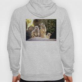 Act Natural Meerkats Hoody