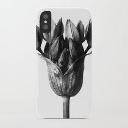 Karl Blossfeldt Botanical Print III iPhone Case