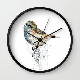 Mr Riroriro, the New Zealand Grey Warbler Wall Clock