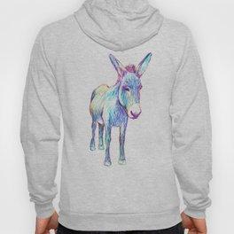 Colourful Donkey Hoody