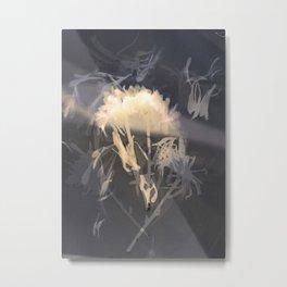 Lumen S2 VE2 Metal Print