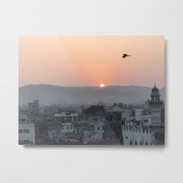 Birds Fly Over The Sun Metal Print