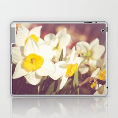 Daffodil flower Laptop & iPad Skin