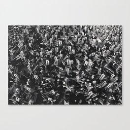 2616 Canvas Print