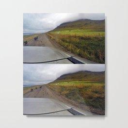 Leader Rams on our Drive to Grettislaug Hot Spring near Sauðárkrókur, Iceland Metal Print