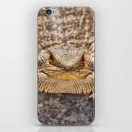 Bearded Dragon iPhone Skin