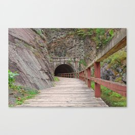 Paw Paw Tunnel Canvas Print