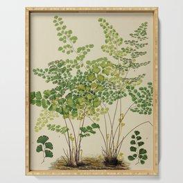 Maidenhair Ferns Serving Tray
