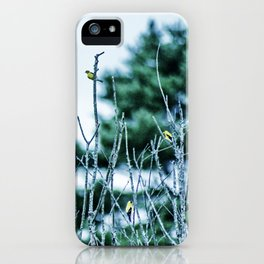 Six Finches in a Tree iPhone Case