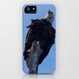 Bald Eagle Photography Print iPhone Case