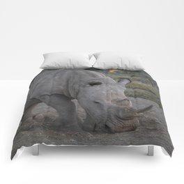 White Rhino Comforters