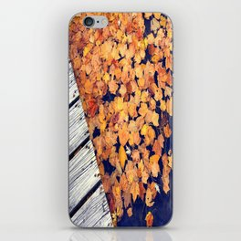 Float II iPhone Skin