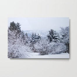 View of Mt. Tom through the snow Metal Print