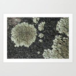 Mini Landscape Art Print