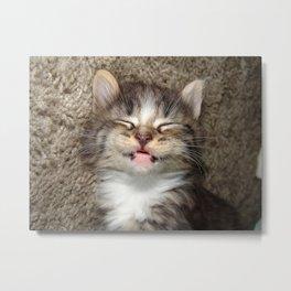 Kitten Smile Metal Print