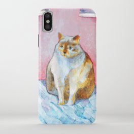 Polite Chunky Cat iPhone Case