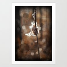 Pussy Willow Winds Art Print