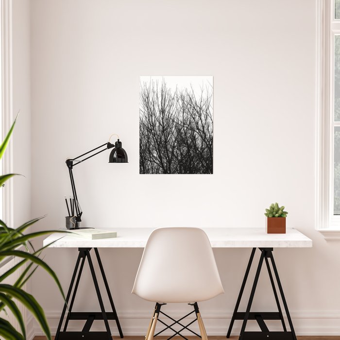 Black white modern abstract tree branch pattern Poster