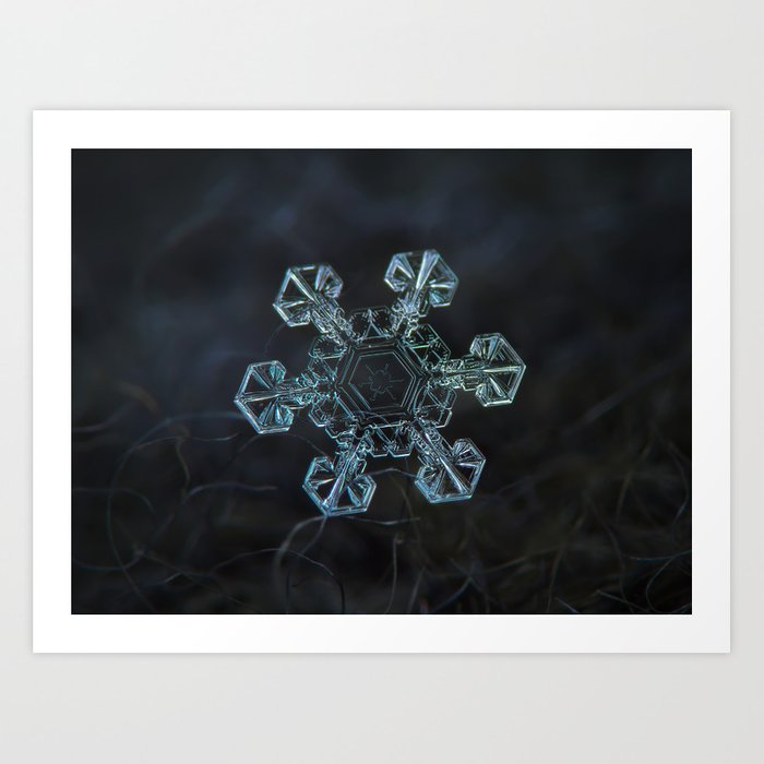 Real snowflake - Ice crown Art Print