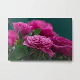 Romantic Blooming Pink Roses On Green Background Metal Print