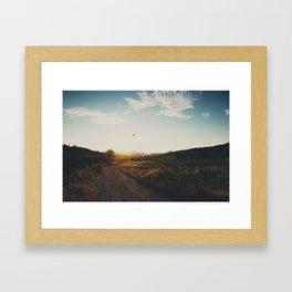 A bird in flight & a vineyard at sunset Framed Art Print